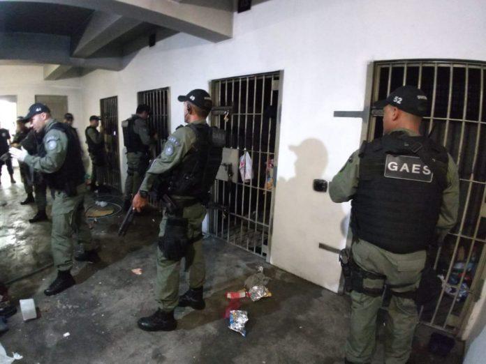 Foto: Susepe/Divulgação