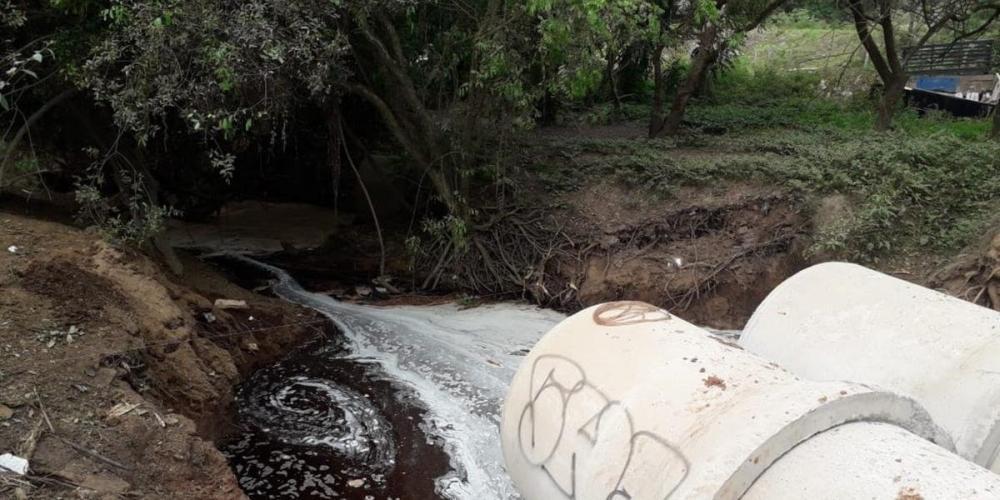 Foram realizadas coletas da água contaminada e o laudos devem ficar prontos na próxima semana   Foto: Fepam / Divulgação / CP