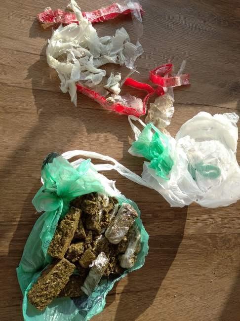 Delegada revela detalhes da apreensão de drogas em Sobradinho