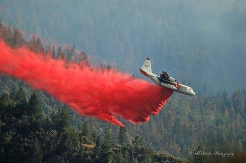 Avião que caiu fazia trabalho de controle das chamas na Austrália | Foto: Divulgação/Coulson Aviation